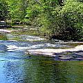 Cascade Creek by Tara Potts