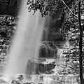 Cascade Falls by Melany Sarafis
