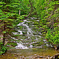 Cascade Over Mossy Rocks Along La Chute Trail In Forillon Np-qc by Ruth Hager