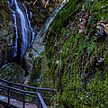 Cascade Waterfall by David Dufresne