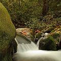 Cascades In Appalachian Mountains by Dan Sproul