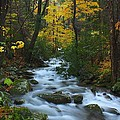 Cascades On The Motor Nature Trail by Nunweiler Photography