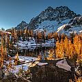 Cascades Ring Of Larches by Mike Reid