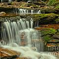 Cascading Everywhere At Ricketts Glen by Adam Jewell