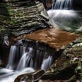 Cascading Glen by Mark Papke