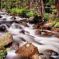 Cascading Rocky Mountain Forest Creek by James BO  Insogna