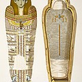 Case And Mummy In Its Cerements by American School
