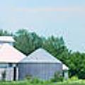 Cass County Farm by Nikolyn McDonald