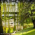 Cass River Frankenmuth Michigan by LeeAnn McLaneGoetz McLaneGoetzStudioLLCcom