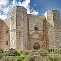 Castel Del Monte by Gabriela Insuratelu