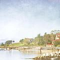 Castine Harbor Maine by Carol Leigh