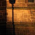 Casting Shadows by Karol Livote