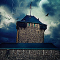 Castle Burg by Angela Doelling AD DESIGN Photo and PhotoArt