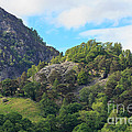 Castle Crag In Borrowdale by Louise Heusinkveld