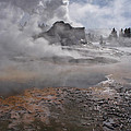 Castle Geyser In Winter by Wes and Dotty Weber