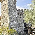 Castle In Spring by Wendy Elliott