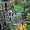 Castle Keep by Marilyn Zalatan
