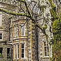 Castle Of Scottish Highlands by Elvis Vaughn