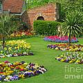 Castle Park Gardens  by Ann Horn
