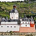 Castle Pfalzgrafenstein by Elvis Vaughn