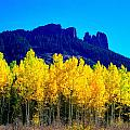 Autumn Castle Rock Aspens by Dale E Jackson