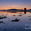 Loch Laich And Castle Stalker by Rod McLean