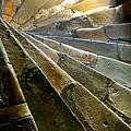 Castle Steps by KG Thienemann