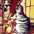 Cat And The Fiddle by Catherine Swerediuk