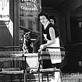 Cat Cafe Paris 1965