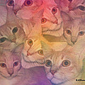 Cat Collage by Diane Parnell