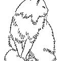 Cat Drawings 1 by Gordon Punt