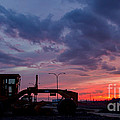 Cat Grader Sunset Silhouette by Alanna DPhoto