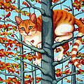 Orange Cat In Tree Autumn Fall Colors by Rebecca Korpita