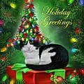 Cat In Christmas Tree Hat by Carol Cavalaris