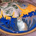 Cat In Doorway Fantasy by Ana Gonzalez