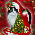 Cat In Long Santa Hat by Carol Cavalaris