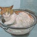 Cat In Casserole  by Kazumi Whitemoon