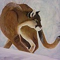 Cat In Snow by Christy Saunders Church
