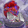 Cat In The Red Hat by Carol Cavalaris
