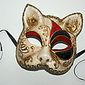 Cat Masquerade Mask On White by David Wei