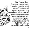 Cat Now I Lay Me Down To Sleep by Robyn Stacey