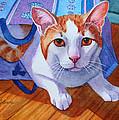Cat Out Of The Bag by Rachel Armington