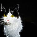 Cat Portrait Fractal Artwork by Matthias Hauser