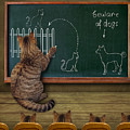 Cat Teacher And His Pupils... :) by Iryna Kuznetsova (iridi)