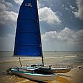 Catamaran by Linda Unger