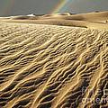 Catch A Rainbow by Edmund Nagele