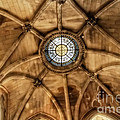 Cathedral Ceiling Of St Colman by Imagery by Charly