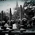 Cathedral Fence by Scott Pellegrin