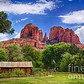 Cathedral Rock by Priscilla Burgers