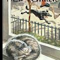 Catnap by Peter de Seve